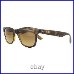 Ray-Ban Lunettes de Soleil RB4640 710/M2 Brillant Havane Dégradé Brun Polarisé
